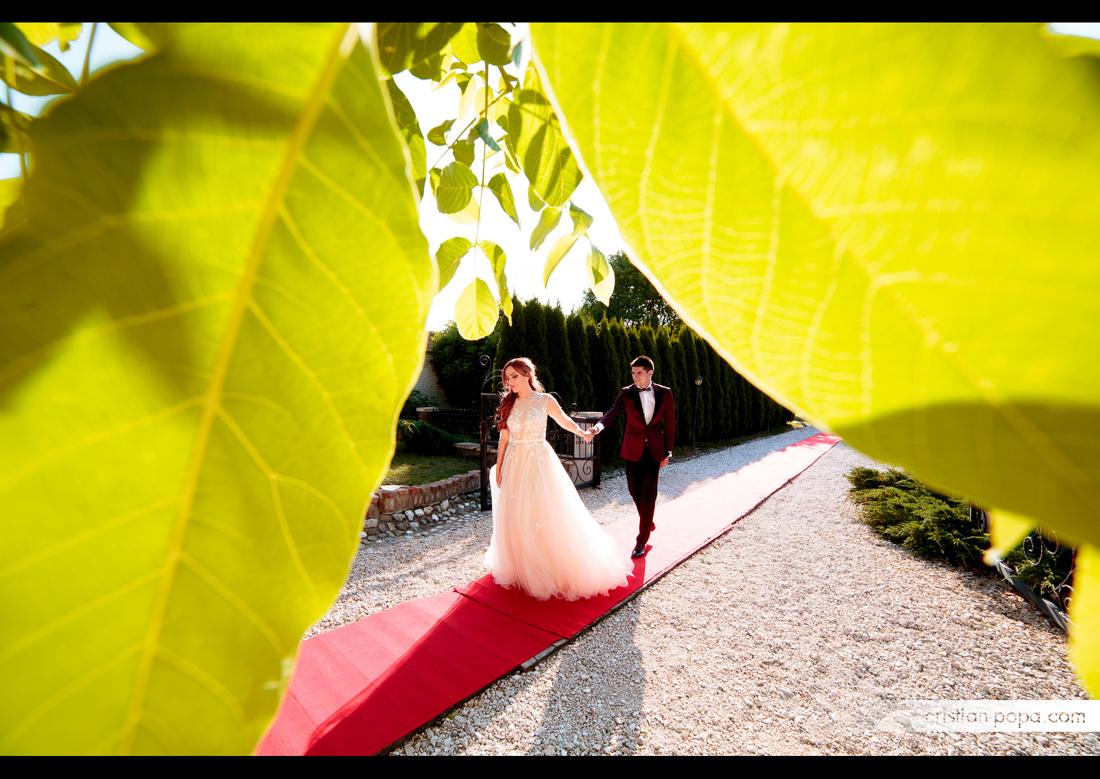 ramona-si-remus-nunta-65