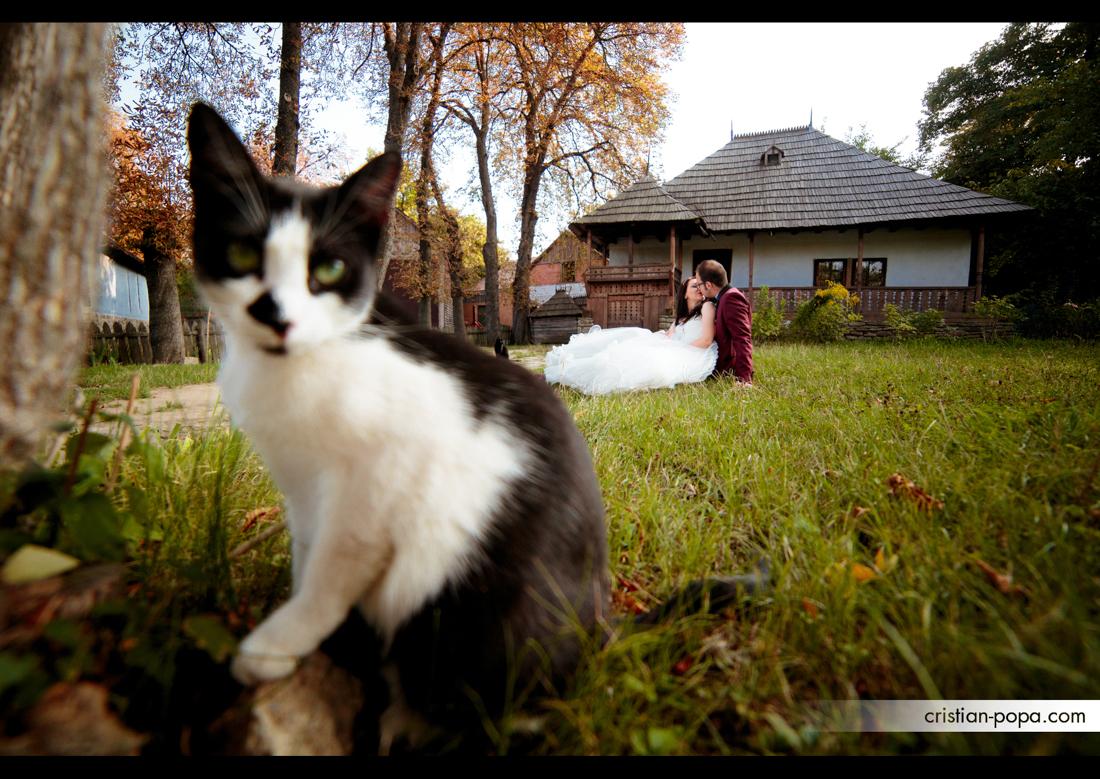Gabriela si Mihai - TTD (24)