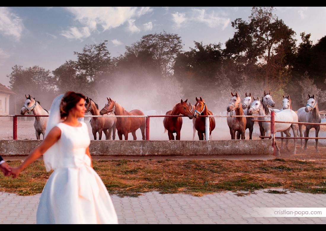 Gabriela & Alexandru – Wedding